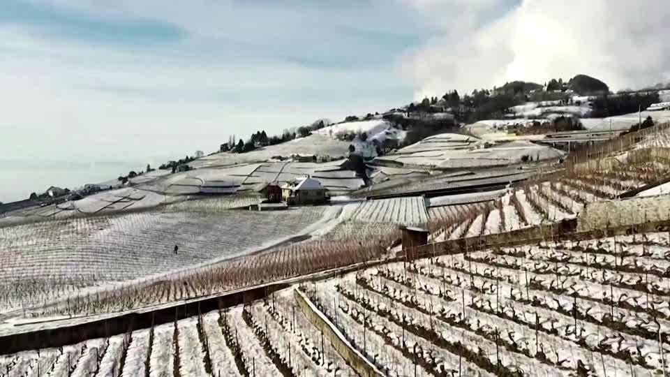 Drone footage shows Swiss vineyards under snow