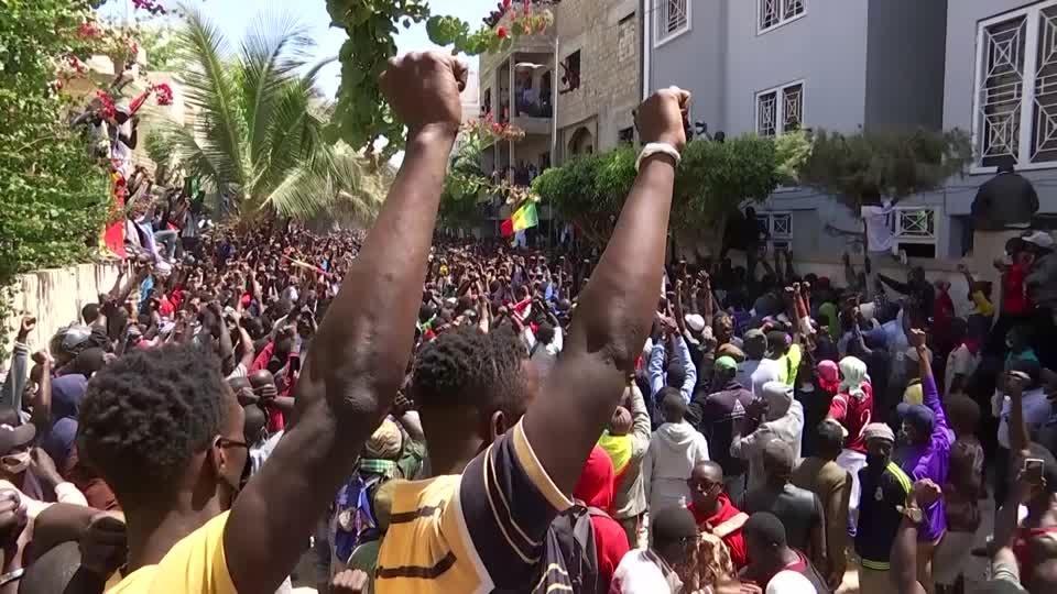 Senegal's opposition leader released on bail