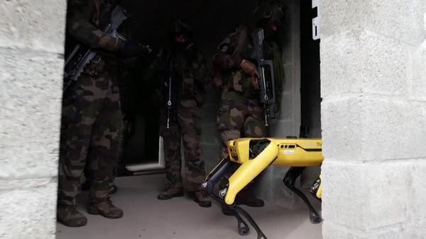 仏軍の訓練にロボット、兵士たちの任務もハイテク化(字幕・14日)