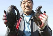 <p>Un soccorritore mostra due uccelli morti ricoperti di catrame nella spiaggia sudcoreana di Mallipo, invasa da una marea nera dopo la fuoriuscita di greggio da una petroliera di Hong Kong. REUTERS/Seo Myung-gon/Yonhap (SOUTH KOREA) KOREA OUT. NO ARCHIVES. NO SALES.</p>