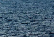 <p>Cinq personnes ont été interpellées en Méditerranée au large de Carthagène (Espagne) après avoir jeté à la mer une tonne et demie de produits stupéfiants d'une valeur estimée à trois millions d'euros. /Photo d'archives/REUTERS/Kyodo</p>