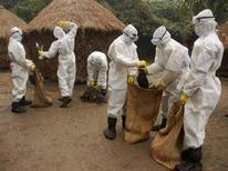 <p>Санитарные работники собирают зараженную птицу в индийской деревне недалеко от Калькутты, 25 января 2008 года. Вирус птичьего гриппа, распространившийся по территории Индонезии, может мутировать и вызвать массовое заболевание среди людей, заявила во вторник Организация по продовольствию и сельскому хозяйству ООН (FAO). REUTERS/Stringer</p>