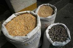 <p>Мешки с зерном на рынке в Гватемале, 3 мая 2008 года. Цены на продукты питания останутся высокими в течение следующего десятилетия, даже если они отступят с нынешних рекордных уровней, а это означает, что миллионы людей могут пострадать от голода, заявили Продовольственная и сельскохозяйственная организация при ООН (ФАО) и Организация экономического сотрудничества и развития (ОЭСР) в докладе, опубликованном в четверг. (REUTERS/Daniel LeClair)</p>