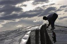 <p>A worker puts a plastic sheet over the top of a greenhouse under-construction in El Ejido, southern Spain, in this March 7, 2007 file photo. REUTERS/Francisco Bonilla</p>