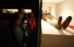 "<p>Visitors tour the ""Mummies of Guanajuato"" exhibition at the Carlos Prieto auditorium in Monterrey, northern Mexico December 11, 2008. REUTERS/Tomas Bravo</p>"