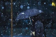 <p>A woman walks through a light snowfall with an umbrella in Toronto December 8, 2008. REUTERS/Mark Blinch</p>