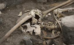 <p>A skeleton discovered at a ruined pyramid in Tlateloco in Mexico City February 10, 2009. Archaeologists have discovered a mass grave with four dozen neatly lined up human skeletons in the heart of Mexico City, revealing clues about the Spanish conquest that killed millions in battle and disease. The 49 bodies, all lying face up with their arms crossed over their chests, were discovered by accident as investigators searched for a palace complex in the Tlatelolco area, once a major religious and political center for the Aztec elite. REUTERS/Daniel Aguilar</p>