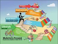 <p>A handout graphic shows the MyActivity Pyramid: Physical Activity Guidelines for Adults. REUTERS/Handout</p>