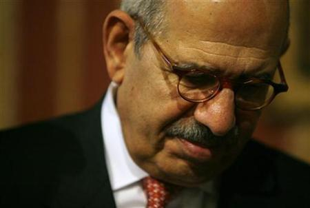 International Atomic Energy Agency (IAEA) Director General Mohamed ElBaradei is seen during a meeting in Seville November 5, 2008. REUTERS/Marcelo del Pozo