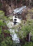 <p>Часть фюзеляжа самолета Boeing 737-800 авиакомпании Gol в амазонских джунглях 1 октября 2006 года. 29 октября 2006 года Боинг 737-800, принадлежавший бразильской авиакомпании Gol, потерпел крушение над амазонскими джунглями, в результате чего погибли все 155 человек, находившихся на борту. REUTERS/Jamil Bittar</p>