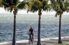 <p>Велосипедист едет по побережью в Ки Вест, Флорида 7 сентября 2008 года. Пальмы росли на Северном полюсе во время короткого теплого периода около 50 миллионов лет назад, сообщает исследование ученых из Утрехтского университета в Голландии. REUTERS/Carlos Barria</p>