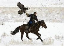 <p>A participant rides with his eagle during an annual hunting competition in Chengelsy Gorge, some 150 km (93 miles) east of Almaty, December 5, 2009. REUTERS/Shamil Zhumatov</p>