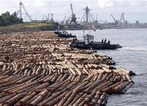 <p>Лес сплавляют в Новоенисейске 26 июля 2009 года. Россия может ввести экспортную пошлину на лес, если западные страны будут препятствовать экспорту российских энергоресурсов, сказал министр природных ресурсов Юрий Трутнев. REUTERS/Ilya Naymushin</p>