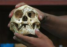 "<p>A scientist holds a skull from one of Indonesia's tiny hobbit-like humans, or ""Flores man,"" who stood about a meter tall and had skulls the size of grapefruit, in a 2004 photo. REUTERS/Beawiharta</p>"