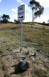 <p>Мертвый меченый вомбат лежит на обочине Гоулберна, Австралия 24 мая 2007 года. Житель Австралии смог отбиться топором от напавшего на него короткошерстного вомбата. Обороняясь, 59-летний мужчина зарубил агрессивное животное. REUTERS/David Gray</p>