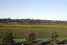 <p>A baseball field is surrounded by vineyards at Balletto Vineyards winery in Sonoma County, California in this undated handout photo. REUTERS/Larry Levine/Handout</p>
