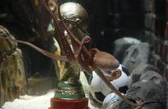 <p>Germany's so-called oracle octopus Paul, swims in front of a mock soccer World Cup trophy in his tank at the Sea Life Aquarium in the western German city of Oberhausen July 12, 2010. REUTERS/Wolfgang Rattay</p>
