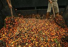 <p>Workers unload oil palm fruits from a truck to a storage area at the state-owned palm oil plantation in Luwu, Indonesia's South Sulawesi province August 7, 2010. REUTERS/Yusuf Ahmad (</p>