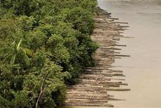 <p>Illegally logged timber, which has been confiscated, is floated down the Guamá River Delta in the northeastern state of Param, Brazil April 14, 2010. REUTERS/Paulo Santos</p>