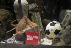 <p>Paul the octopus is seen before entering the 'England 2018 World Cup bid box' in the Sea Life Centre in Oberhausen, Germany, in this undated handout photograph received in London on August 20, 2010. REUTERS/Sea Life Centre/Pitch/Handout</p>