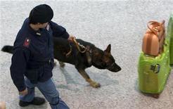 <p>Итальянский полицейский со служебной собакой патрулирует аэропорт Фьюмичино в Риме 5 января 2010 года. Пакет, адресованный премьер-министру Италии Сильвио Берлускони и найденный на борту летевшего из Афин грузового самолета, загорелся, когда полиция попыталась открыть его, сообщил в среду источник в итальянской полиции. REUTERS/Max Rossi</p>