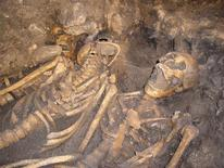 <p>Skeletons of troops found in 1996 are seen in a mass grave close to a battlefield site in this undated photograph, in Towton, Yorkshire. Archaeologists believe they have found evidence of the first use of firearms on a British battlefield after fragments of shattered guns were unearthed on a site that saw one of the bloodiest battles ever fought on English soil. The bronze barrel fragments and a very early lead shot were discovered by a metal detectorist working closely with a team that has been trying to unlock the secrets of the 1461 battle of Towton, in Yorkshire, northern England. REUTERS/Tim Sutherland/Handout</p>