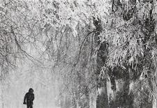 <p>Снег в Москве 29 декабря 2010 года. Москва останется во власти сильных морозов на этой неделе, по ночам температура воздуха будет опускаться ниже минус 21, к концу недели - ниже минус 25, ожидают синоптики. REUTERS/Denis Sinyakov</p>