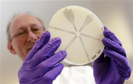 David Livermore, director of the Antibiotic Resistance Monitoring & Reference Laboratory at the Health Protection Agency, holds a plate which was coated with the antibiotic-resistant bacteria called Klebsiella with a mutation called NDM 1 and then exposed to various antibiotics, in his laboratory in north London March 9, 2011. REUTERS/Suzanne Plunkett