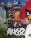 <p>Le jeu Angry Birds du finlandais Rovio Mobile, téléchargé 200 millions de fois depuis son lancement fin 2009. L'explosion des smartphones et des téléchargements d'applications ont ouvert des débouchés pour les créateurs de jeux vidéo, propulsant de nouvelles vedettes au top des ventes du secteur et poussant les entreprises établies à explorer de nouveaux modèles économiques. /Photo d'archives/REUTERS</p>