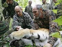 <p>Russia's Prime Minister Vladimir Putin (L) holds a five-year-old tiger's head as scientists put on a collar with a satellite tracker on the animal in the academy of sciences Ussuri reserve in Russia's Far East, August 31, 2008. REUTERS/RIA Novosti/Kremlin/Alexei Druzhinin</p>
