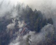 <p>Горящие в тайге деревья, Красноярск, 21 апреля 2011 года. Разгоревшиеся в России лесные пожары уничтожили в два раза больше леса, чем сгорело весной прошлого года. REUTERS/Ilya Naymushin</p>