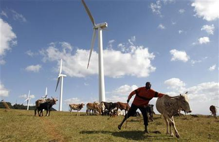 A Masaai herdsman looks after his cattle near the power-generating wind turbines at the Kenya Electricity Generating Company (KenGen) station in Ngong hills, 22 km (13.7 miles) southwest of Kenya's capital Nairobi, July 17, 2009. REUTERS/Thomas Mukoya