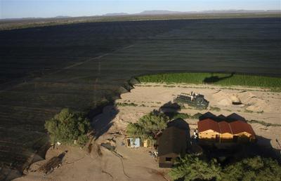 Mexico's biggest marijuana plantation