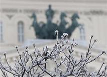 <p>Branches of a tree in front of the Bolshoi theatre in central Moscow are covered with ice, December 26, 2010. REUTERS/Mikhail Voskresensky</p>