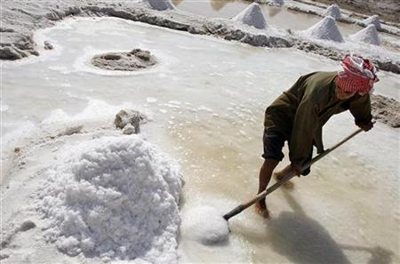Special Report: A pinch of doubt over salt - Reuters