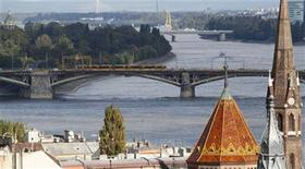 <p>The Margaret Bridge, the renovation of which is one of the largest public projects under way in Budapest, is seen in the city September 29, 2010. REUTERS/Bernadett Szabo</p>