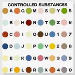 <p>Damien Hirst's Controlled Substance Key Painting, 1994. REUTERS/Photographed by Prudence Cuming Associates � Damien Hirst and Science Ltd/Courtesy Gagosian Gallery</p>