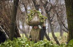 <p>A Kashmiri woman carrying fodder for her cattle on her head walks on a cold day in Srinagar January 4, 2012. REUTERS/Fayaz Kabli</p>