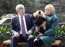 <p>Canada's Prime Minister Stephen Harper looks at a panda being held by his wife Laureen at a zoo in Chongqing February 11, 2012. REUTERS/Chris Wattie</p>