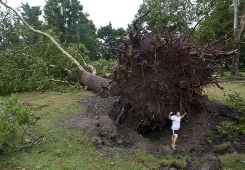 Tornado hits New York