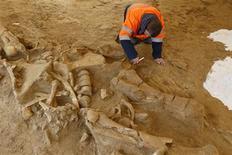 <p>Le mammouth dont le squelette a été découvert à Changis-sur-Marne, près de Paris, a probablement été dépecé par des hommes de Néandertal, ce qui constitue une preuve rare de la coexistence en France des deux espèces. /Photo prise le 8 novembre 2012/REUTERS/Benoît Tessier</p>