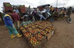 En la foto, unos vendedores ofrecen tomates en un mercado mayorista privado en La Habana, 26 de marzo del 2013. Cuba abrió el domingo su primer mercado mayorista en décadas, un experimento limitado a la comercialización de suministros agrícolas en una provincia y la última reforma del Gobierno orientada a impulsar la economía de estilo soviético. REUTERS/Enrique De La Osa