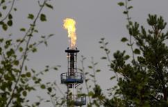 Пламя над трубой НПЗ в Мозыре 11 сентября 2013 года. Представители трех стран, входящих в ОПЕК, сказали, что картель не волнуется по поводу снижения цен, потому что предстоящее в ближайшие недели сезонное повышение спроса поддержит рынок.  REUTERS/Vasily Fedosenko