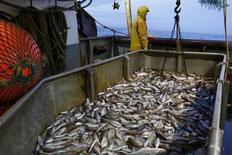 Рыболовный траулер у северного побережья Франции 22 октября 2013 года. ЕС может оказать финансовую помощь европейским экспортерам рыбы, испытавшим проблемы после введения российского продовольственного эмбарго, сообщила во вторник Еврокомиссия. REUTERS/Pascal Rossignol