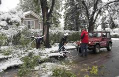Local area residents clear away fallen tree branches after they collapsed from the weight of the heavy snow during a summer snow storm in Calgary, Alberta, September 10, 2014. REUTERS/Todd Korol