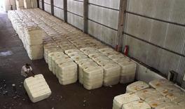 Un empleado transporta un cargamento de algodón en la granja Falavinha en Mato Grosso, Brasil, sep 7 2011. Estados Unidos y Brasil están cerca de resolver una disputa comercial de diez años sobre los subsidios al algodón, dijo a Reuters el martes el ministro de Agricultura Neri Geller, lo que sería el primer paso concreto para reparar unos lazos bilaterales que fueron dañados por un escándalo de espionaje.         REUTERS/Paulo Whitaker