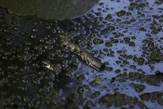 Ветка плавает в луже нефти на месте станка-качалки в лесу близ Мерквиллер-Пешельброна 7 мая 2014 года. Снижение мировых цен на нефть до $80 сделает нерентабельной около 3 процентов мировой добычи, включая ряд проектов в Канаде, Анголе, Бразилии и Норвегии, подсчитало Международное энергетическое агентство (IEA). REUTERS/Vincent Kessler