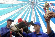A farmer lifts the trophy next to the cow that was just crowned Miss Milk Cow 2014 during the annual milk cow beauty contest in Moc Chau plateau, October 15, 2014.   REUTERS/Kham/Files