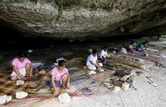 Typhoon Haiyan survivors weave mats in a cave in Basey, Eastern Samar, in central Philippines November 6, 2014. REUTERS/Erik De Castro