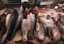 Прилавок с рыбой на рынке в Санкт-Петербурге 5 апреля 2012 года. Группа Русское море, один из крупнейших в стране дистрибуторов рыбы, по итогам девяти месяцев 2014 года получила первую значимую выручку от продажи выращенного на севере России лосося - более 1 миллиарда рублей, за счет чего, несмотря на запрет импорта рыбы, нарастила общие продажи на 13 процентов, сообщила компания в понедельник. REUTERS/Alexander Demianchuk
